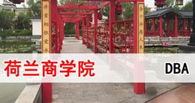 2019荷兰商学院DBA工商管理在职博士招生简章(北京班)